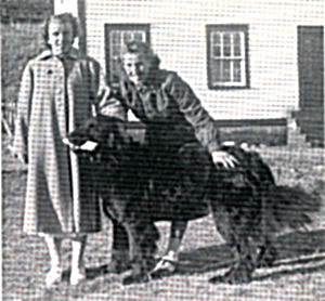 Sheila Rawlings and I with Leslie's dog. Outside the old Nursing Home at Forteau, 1953.