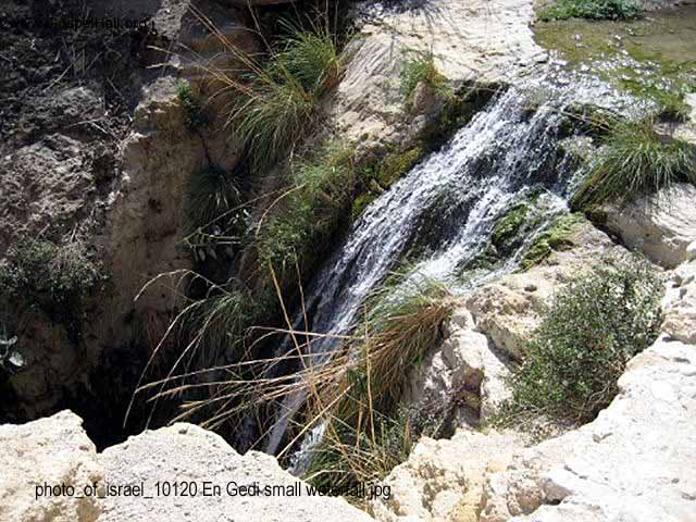 photo_of_israel_10120 En Gedi small waterfall.jpg