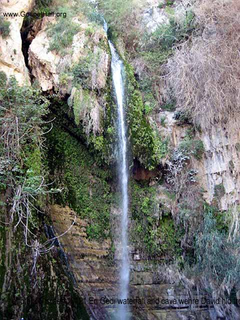photo_of_israel_10121 En Gedi waterfall and cave wehre David hid from King Saul.jpg